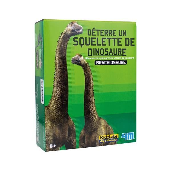 Dinosaurier Ausgrabung - Brachiosaurus