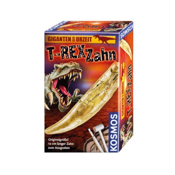 T - Rex zahn