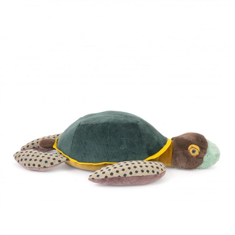 Schildkröte Gross